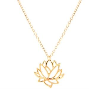 🆕️Lotus gold  Necklace